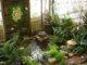 Indoor tree planting1